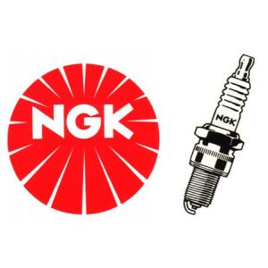 Spark plug NGK CR9EK